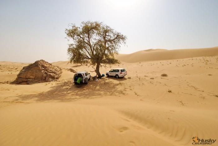 Oman 2012.03 cz.4